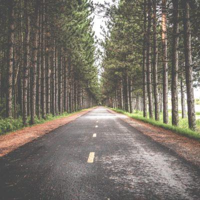 В Пермском крае названы дороги, которые будут отремонтированы в 2019 году в рамках национального проекта «Безопасные и качественные автомобильные дороги»