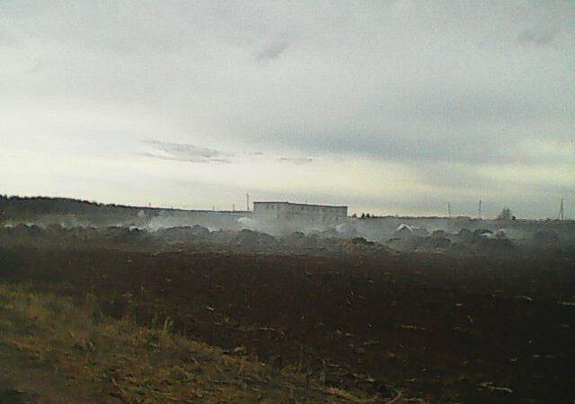 В Нытвенском округе тиктокеры сожгли ферму